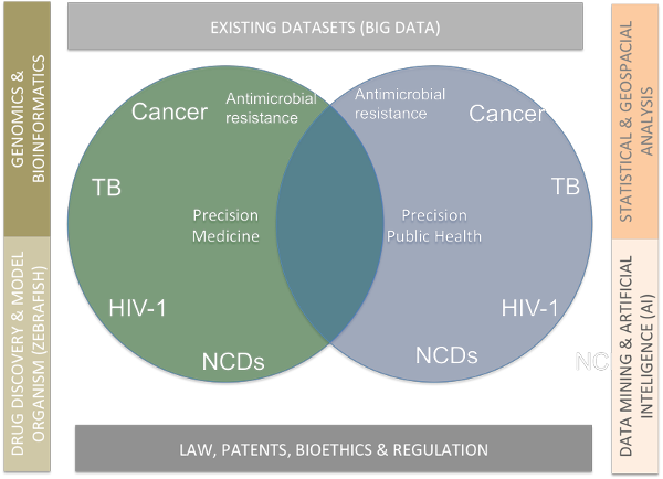 KRISP and UKZN Flagship Diagram showing how precision medicine, precision public health and translational science are related in this Flagship applicatio