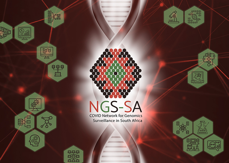 Network for Genomic Surveillance in South Africa - NGS-SA