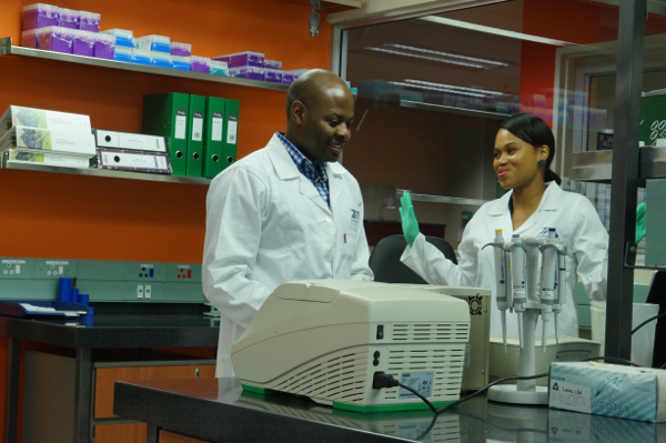 Biotechnicians Benjamin Chimukangara and Zandile Sibisi at work in a Krisp laboratory at UKZN developing new genetic tests.