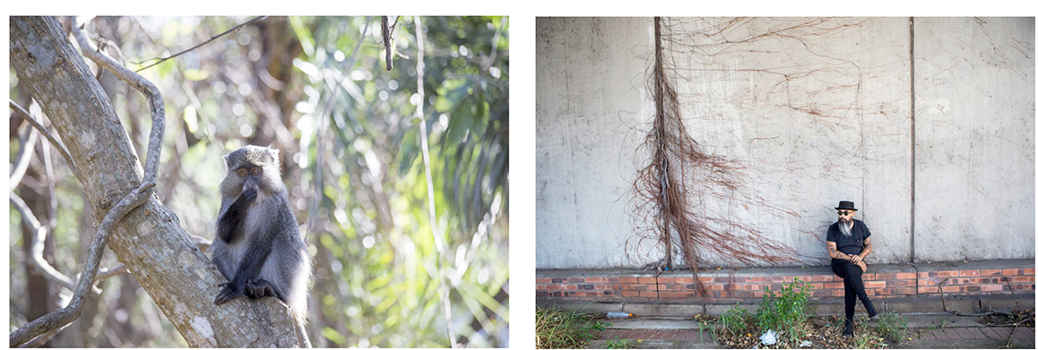 Lifeblood: A man and a monkey… both have cool beards (politics aside). Doung – contemplating roots, walls and pathways. Downtown Durban