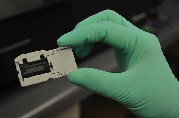 GENOMIC PROTOCOLS FOR SARS-COV-2